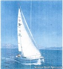 Amel Super Mistral Sport sailing Picture extracted from the commercial documentation © Amel