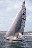 Hallberg-Rassy 37 sailing