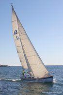 Hallberg-Rassy 310 en navigation