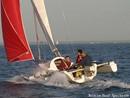 Astus Boats  Astus 20.1 sailing
